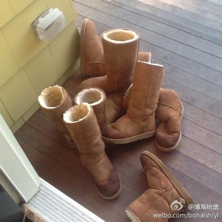 ugg_shoes