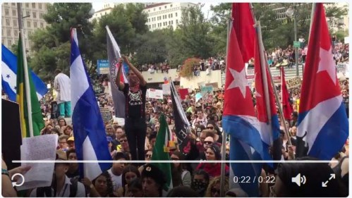 protesters_flags2