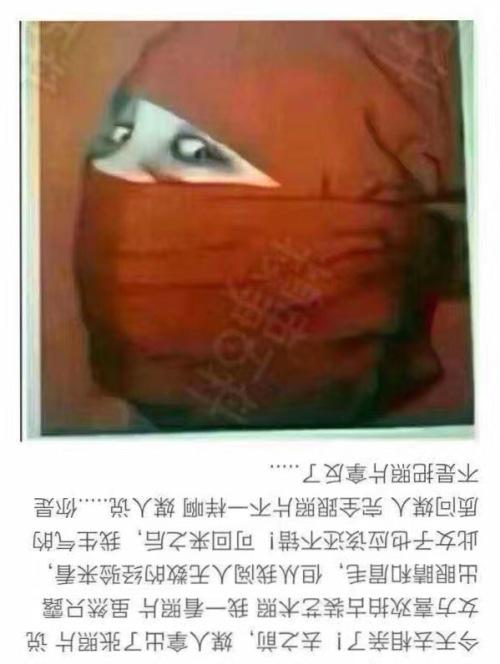 xiangqinzhao2